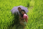 In the middle of the rice fields