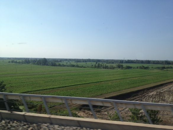 View from the train. Rice and veggie fields everywhere!