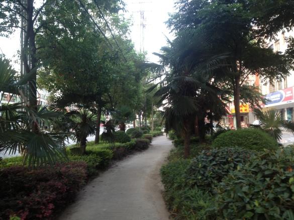 Green sidewalks all around the city